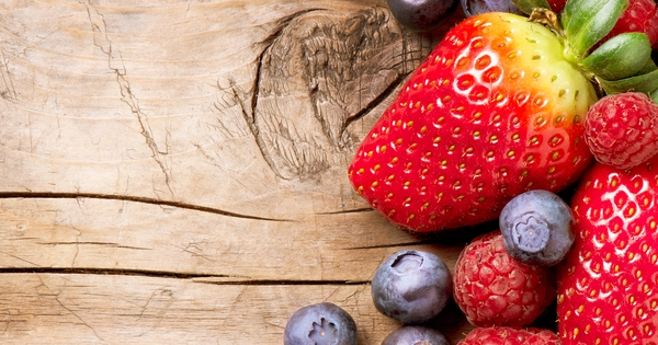Rheumatoide Arthritis Ernährung Subbotina
