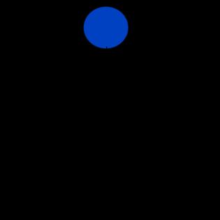 Phospholipid, Körper