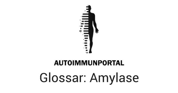Amylase, Worterklärung, Definition