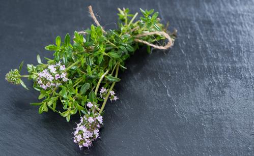 Kräuter, Bohnenkraut, Heilkräuter, Pflanze