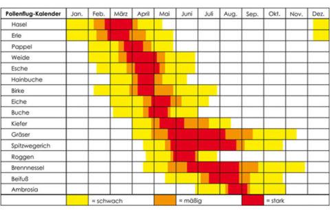 pollenflug, Pseudoallergien und Reizstoffe