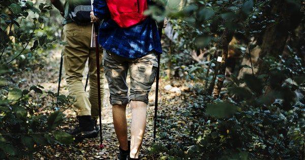 Multiple Sklerose Therapie (2)