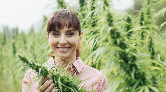 Cannabis, Entzündungen