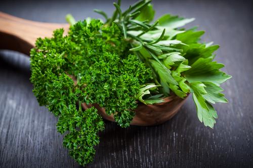 Kräuter-Petersilie-Heilkräuter-Pflanze