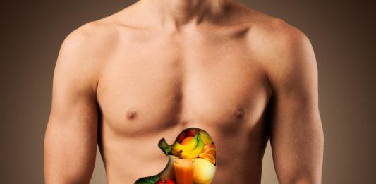 Magen, Darmflora