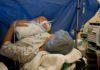 Kaiserschnitt, Immunsystem