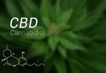 Was ist CBD? Überblick über medizinisches Cannabis