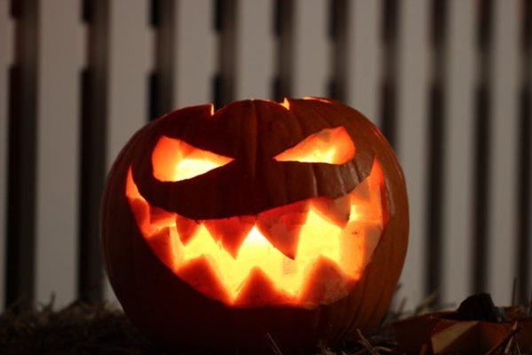 Kürbis Kürbiskerne Halloween