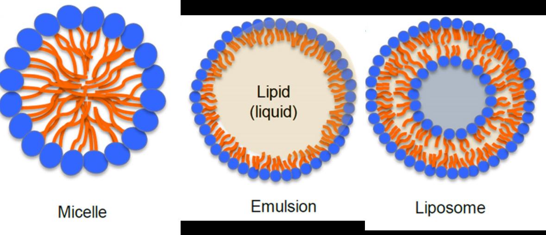 Liposom Mizelle Emulsionen